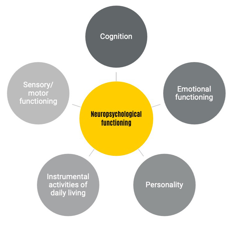 A visual representation of the details that impact Neuropsychology, including cognition, emotional functioning, and personality.