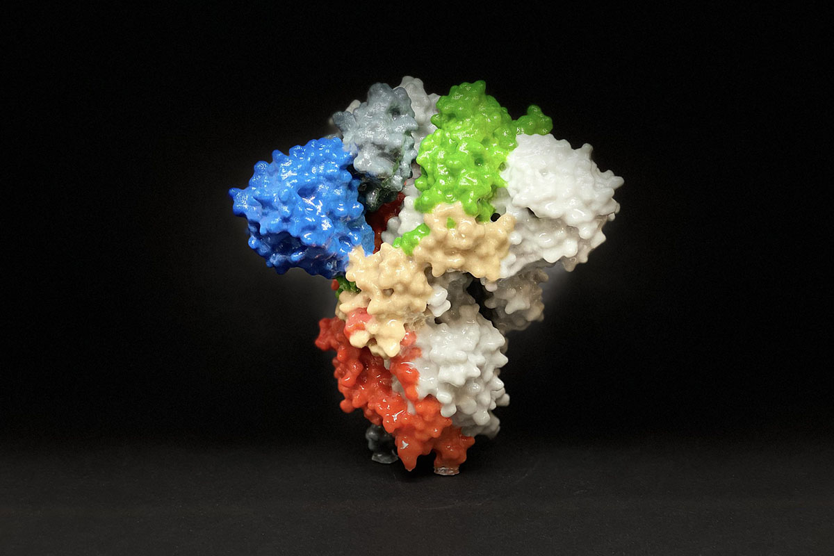 3D print of a spike protein on the surface of SARS-CoV-2