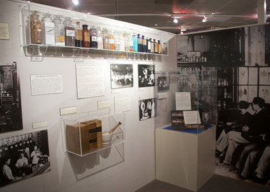 A picture of the medical museum