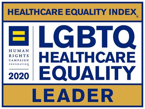 HEI Healthcare Equity Leader 2020 Badge