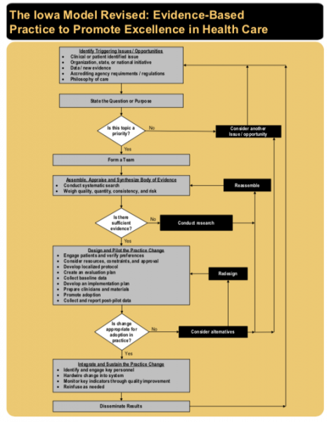 A visual description of the Iowa Model flowchart
